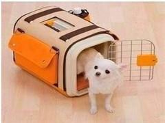 从恩施到黄石的猫咪小狗宠物托运点击查询详情
