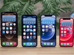 iphone6 64G 土豪金 美女自用