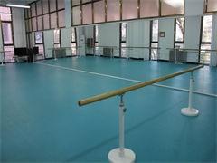重庆舞蹈艺考集训学校