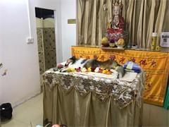 杭州寵物殯葬服務價格