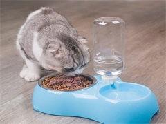 全新狗糧寵物用品,寵物食品