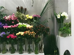 喀什市鮮花快遞網上訂花送花訂開業花籃生日鮮花蛋糕全市免費送貨