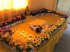 杭州動物無害化 寵物火化 寵物殯葬服務中心