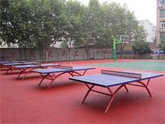 对乒乓球感兴趣的与我联系