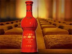 茅仙-追梦酒
