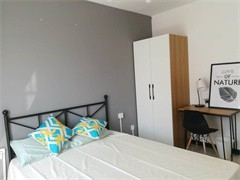 新中心区 深航假日名居 5室 2厅 188平米 整租