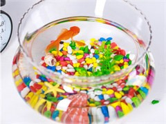 漳州鸿有水族专业的鱼缸清洗鱼缸搬运鱼缸维护鱼缸