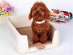 廠家直銷 一次性餐盒 打包盒 餐飲打包碗 一次性餐盒 750ML碗