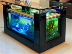 1個2米 80彩蝶魚缸一個1米5 60彩蝶魚缸