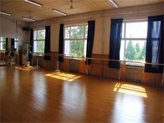 職業培訓包分配工作鋼管舞爵士舞酒吧領舞教練培訓