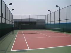 省隊退役運動員帶你打網球