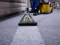 承接各區開荒保潔 地毯清洗 除蟲除蟻