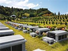 天津海葬服務 天津市海葬服務辦理 天津市海葬