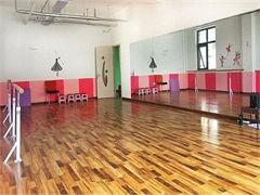 蕪湖爵士舞培訓專業舞蹈班,蕪湖爵士舞培訓教育機構