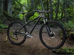 適合中國國情的新型自行車項目轉讓