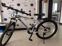 捷安特海倫自行車