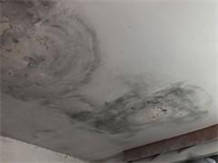 旌德县房屋漏水检测探测 专业防水堵漏