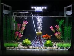 定做魚缸生鮮超市移動式海鮮池水產貝類定制魚缸
