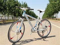 全成都送貨上門,驗貨付款 本店口碑有目共睹,已經營自行車批發十年有余,贏得各