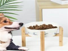 9成新狗用品价格160