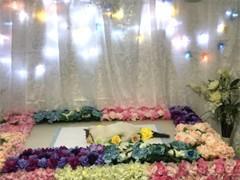 杭州狗狗墓地 寵物樹葬 寵物喪事