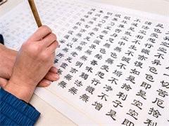 罗湖苏氏书法培训班硬笔软笔书法国画暑期培训