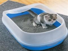 全新宠物笼子,猫笼子
