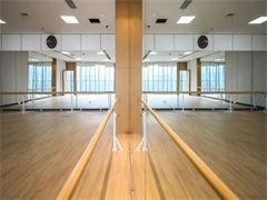 华翎舞蹈培训学校专业钢管舞 专业爵士舞 肚皮舞,平台D