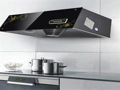 大悟烘烤厨宝两层四盘燃气烤箱配镀铝烤盘