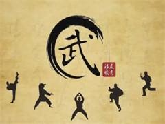 常年招幼儿园至中专学生,武术及文化教育的一体式教学