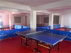 岳阳路盛乒乓球俱乐部