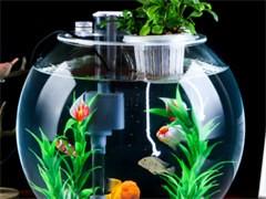 鱼缸专业定制出售