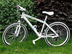白菜價出售閑置組裝bike,懂家來 給錢就甩