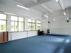 重庆舞蹈学校 舞蹈艺考一本要分