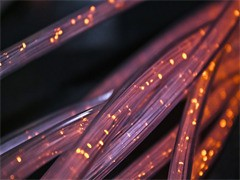 無線呼叫器醫護IP數字呼叫系統定位送餐系統取餐器專業生產廠家