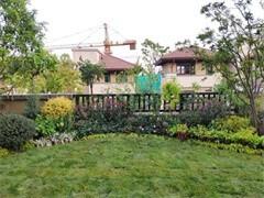 武汉仿真植物 仿真植物墙 仿真微景观设计加施工