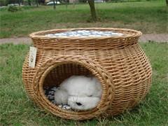 榆林市优质犬粮批发艾尔星期六犬粮 厂家直供