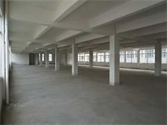 大型正規鋼結構廠房出租或者出售