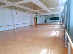 喀什市成人舞蹈零基礎鋼管舞爵士舞學校
