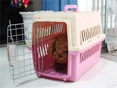 从恩施到随州的猫咪小狗宠物托运点击查询详情