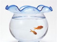 水族箱魚缸定做魚缸定制