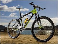 轉讓捷安特折疊 ,8變速,20圈山地自行車