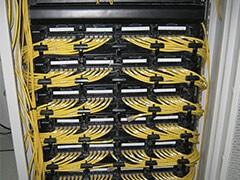 20兆 光纤 1年3个月 600 送猫