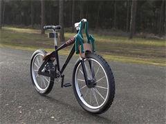 鳳凰兒童自行車正品