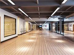 鋼管舞爵士舞專業培訓---華翎舞蹈國際連鎖店慶促銷