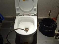 成都新津附近抽糞 公司專業環衛抽糞電話