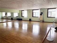 重庆舞蹈学校 舞蹈艺考都有些技巧