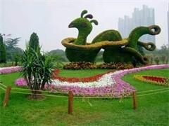 黄石晨晨花店提供各种鲜花,开业花篮,会议插花