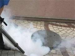 随州地区灭鼠灭蟑灭蚊蝇专业团队