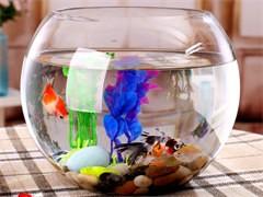 飯店海鮮缸酒店海鮮池魚缸定做